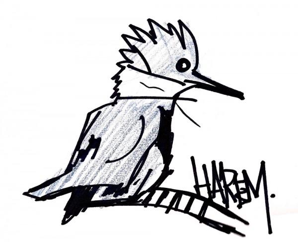 Harem-Bird